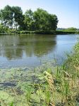 220px-Kalamazoo_River