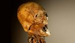 Henry IV Skull
