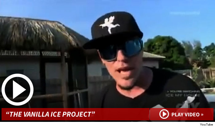 ice ice baby rapper vanilla ice charged with burglary and grand theft jonathan turley. Black Bedroom Furniture Sets. Home Design Ideas