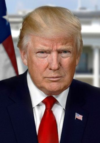 Image result for donald trump presidential portrait